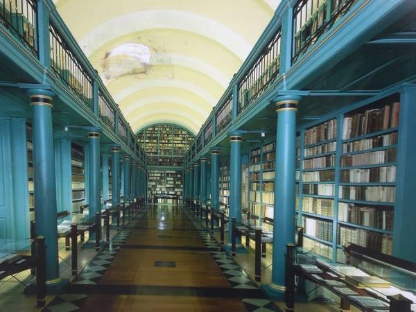 bibliothek fakultät 5